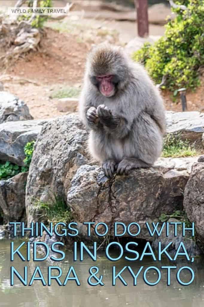 Things to do in Osaka, Nara & Kyoto with kids | things to do in Nara | Things to do in Kyoto | Japan with kids | Deer in Nara | Kyoto with kids | Nara with kids | Osaka with kids | Visit Japan | Kansai Japan |