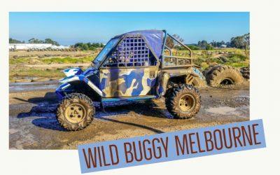 Adventure activities Melbourne – Wild Buggy