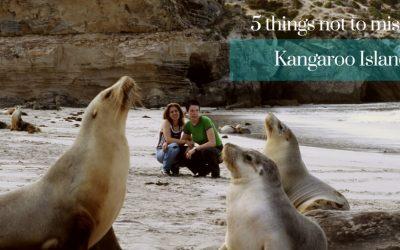 5 things to do on Kangaroo Island South Australia