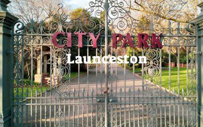 City Park Launceston and the Macaque Monkeys